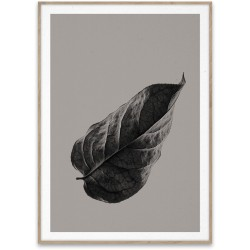 Paper Collective Sabi Leaf 01