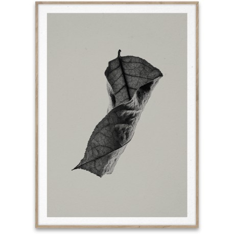 Paper Collective Sabi Leaf 04